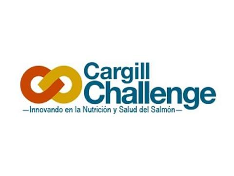 Cargill-UC Challenge - WDesign - Diseño Web Puerto Montt