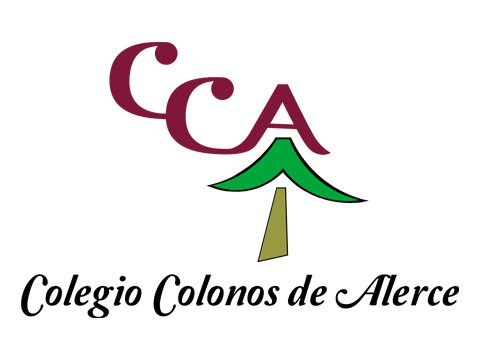 Colegio Colonos - WDesign - Diseño Web Puerto Montt