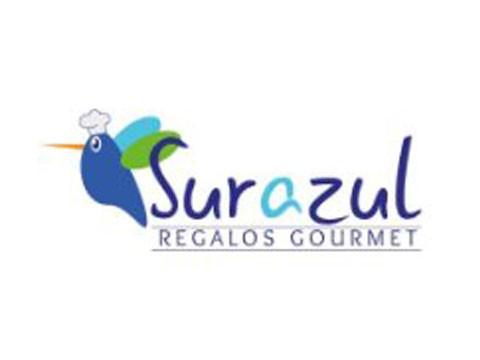 Regalo Sur Azul - WDesign - Diseño Web Puerto Montt